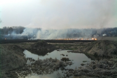 Pożar łąki