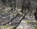 Zaśmiecona dolina Ślepiotki - jar w okolicy ul. Jankego