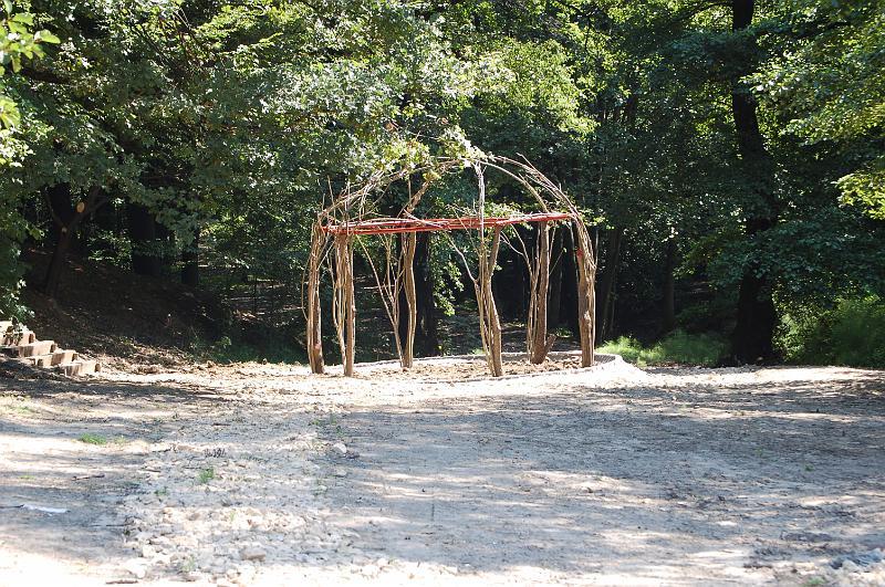 Żywa altanka utworzona z pędów wierzby na skraju lasu łęgowego i przyszłej łąki