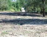 Teren pod łąkę kwietną - wywieziono gruz i śmieci, nawieziono ziemię torfową