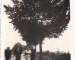 Ulica Armii Krajowej (widać płot cmentarza)