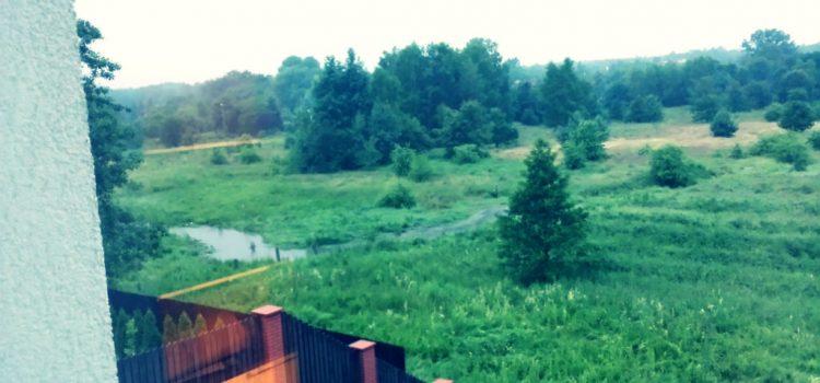 Katowice – Miasto Ogrodów BEZ OGRODÓW