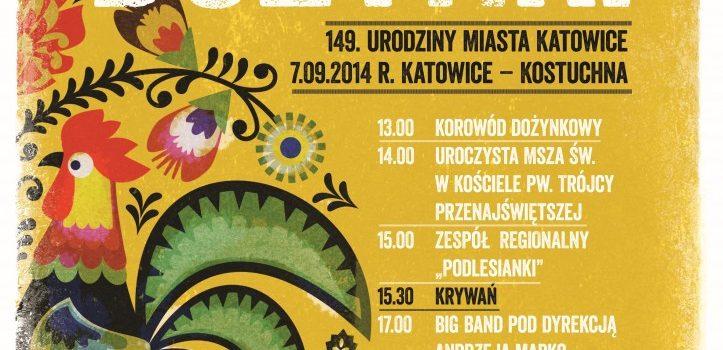 Katowickie Dożynki 2014 w Kostuchnie